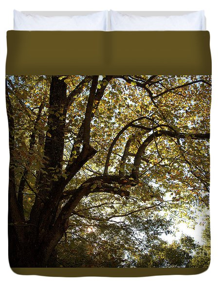 Autumn Branches Duvet Cover