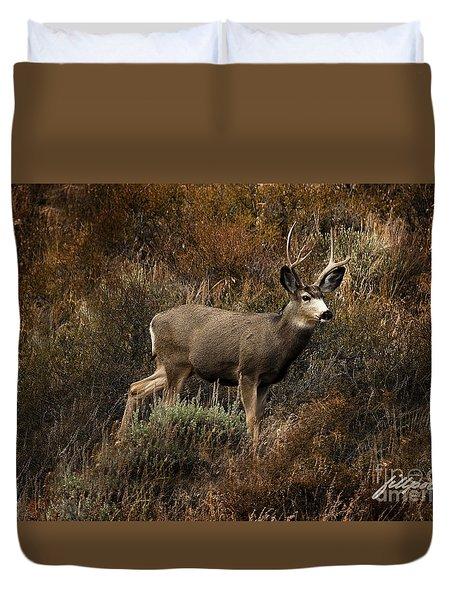 Autumn Buck Duvet Cover