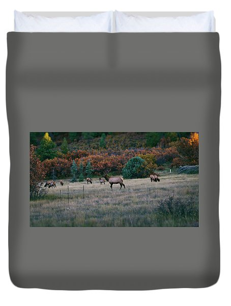 Autumn Bull Elk Duvet Cover