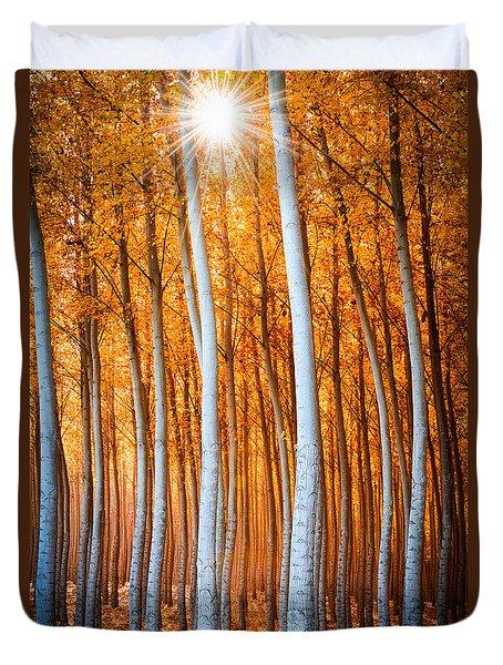 Duvet Cover featuring the photograph Autumn Canopy Burst by Dan Mihai