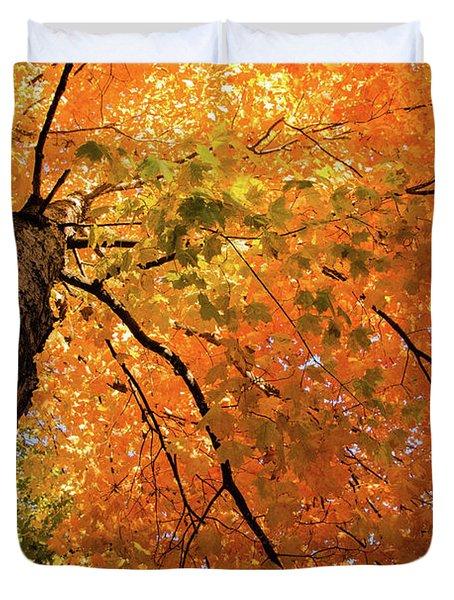 Autumn Canopy In Maine Duvet Cover