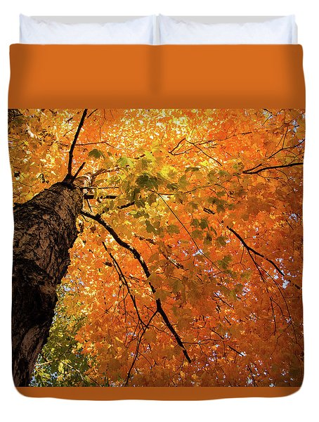 Autumn Canopy In Maine Duvet Cover