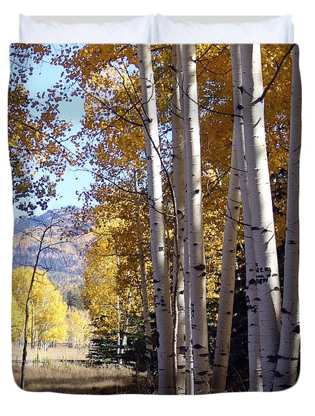 Autumn Chama New Mexico Duvet Cover