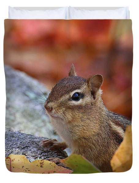 Autumn Chipmunk Duvet Cover