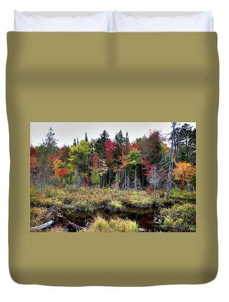 Duvet Cover featuring the photograph Autumn Color In The Adirondacks by David Patterson