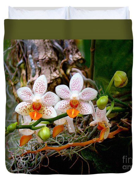 Autumn Colored Orchids Duvet Cover by Sue Melvin