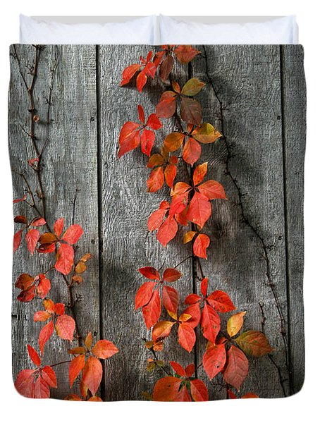 Autumn Creepers Duvet Cover