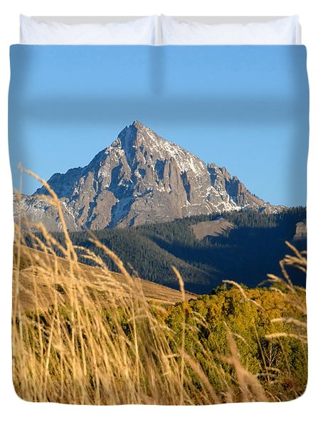 Autumn Day Duvet Cover by David Lee Thompson
