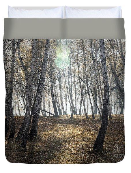 Autumn Deep Fog In The Morning Birch Grove Duvet Cover