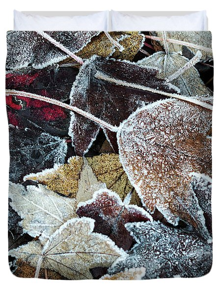 Duvet Cover featuring the photograph Autumn Ends, Winter Begins 1 by Linda Lees