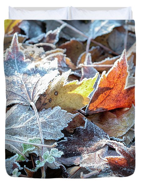 Duvet Cover featuring the photograph Autumn Ends, Winter Begins 3 by Linda Lees