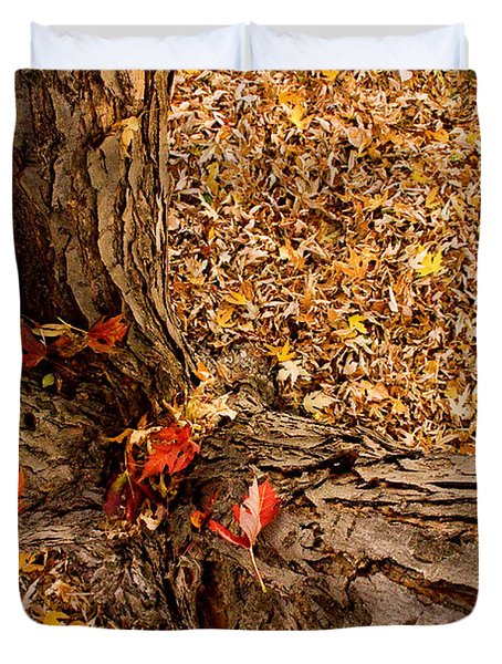 Autumn Fall Duvet Cover by James BO  Insogna