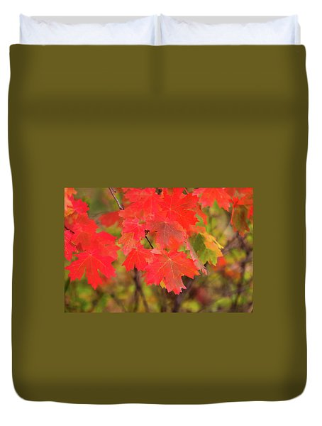 Duvet Cover featuring the photograph Autumn Flash by Bryan Carter