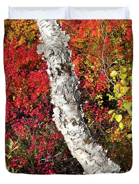 Autumn Foliage In Finland Duvet Cover by Heiko Koehrer-Wagner