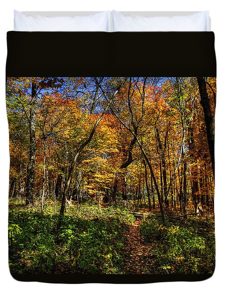 Autumn Forest Path At Johnson's Mound Duvet Cover