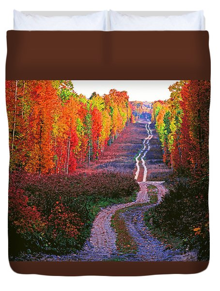Autumn Forest Track Duvet Cover by Dennis Cox WorldViews