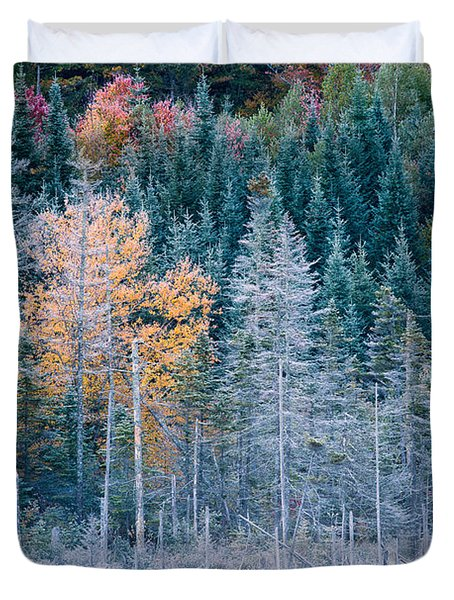 Autumn Frost Duvet Cover
