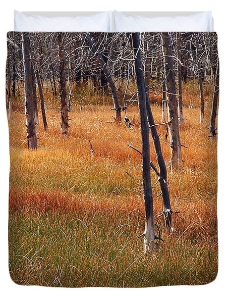 Autumn Grasses In Yellowstone Duvet Cover