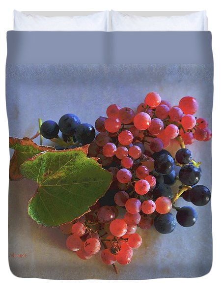 Autumn Harvest Grapes Duvet Cover