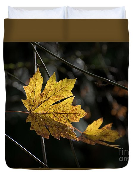 Duvet Cover featuring the photograph Autumn Highlight by MaryJane Armstrong