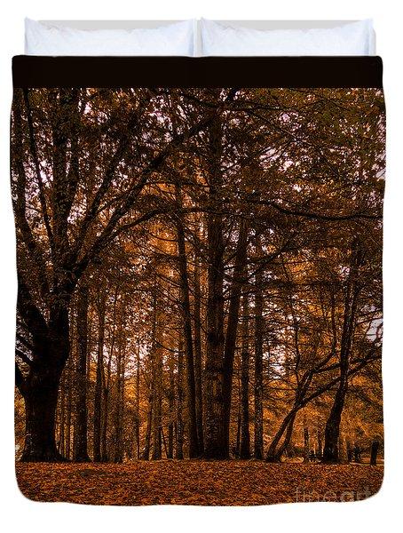 Autumn In Colligan Wood Duvet Cover