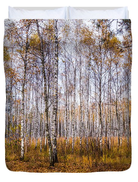 Autumn In The Birch Grove Duvet Cover by Dmytro Korol