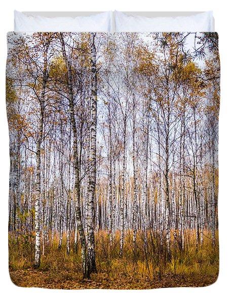 Autumn In The Birch Grove Duvet Cover