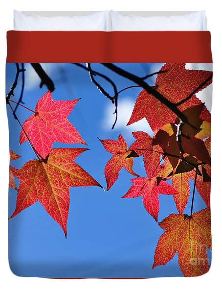 Autumn In The Sky Duvet Cover by Kaye Menner