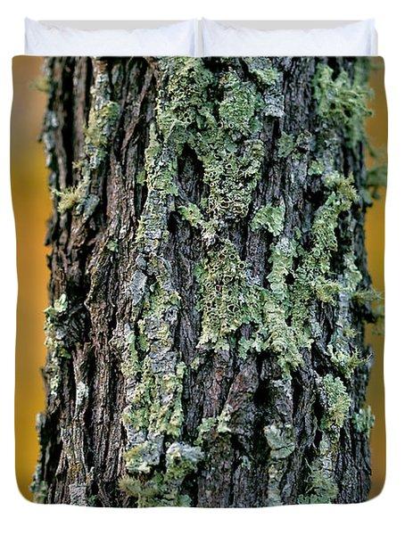 Autumn Ironbark Duvet Cover