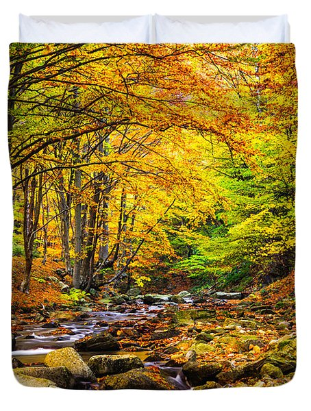 Autumn Landscape Duvet Cover by Evgeni Dinev