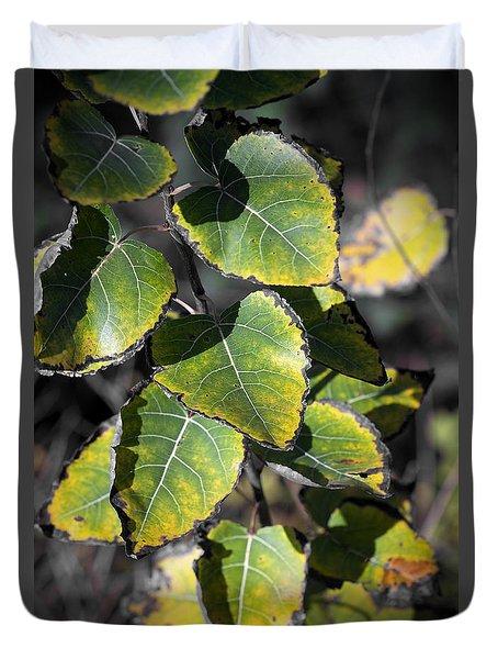 Autumn Leaf 5 Duvet Cover