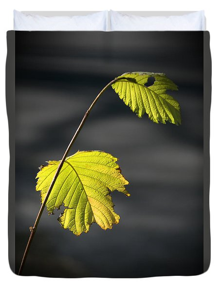 Autumn Leaf 6 Duvet Cover