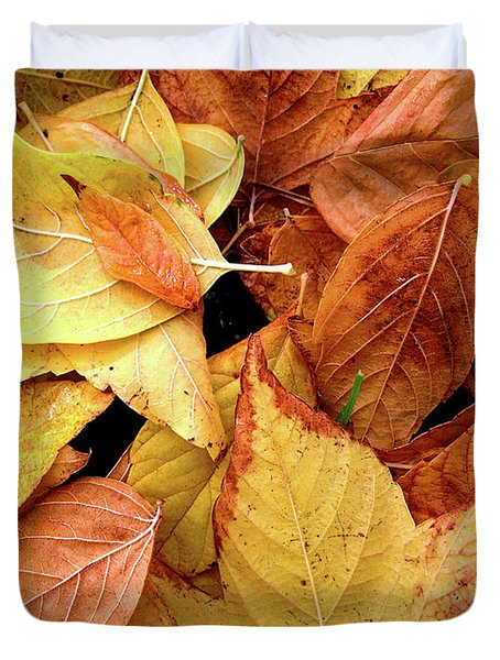 Autumn Leaves Duvet Cover by Carlos Caetano