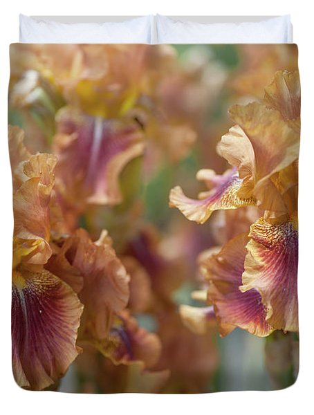 Autumn Leaves Irises In Garden Duvet Cover