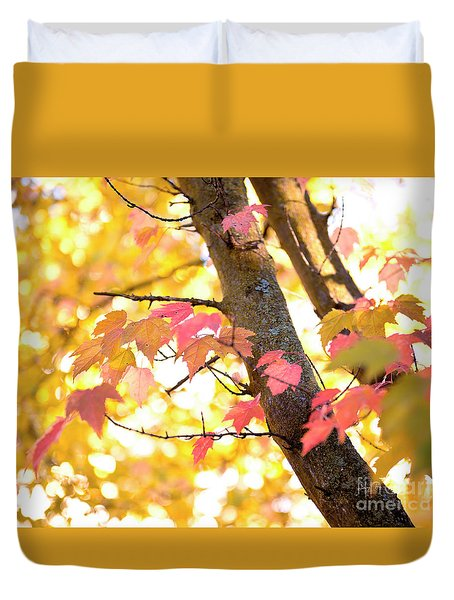 Duvet Cover featuring the photograph Autumn Leaves by Ivy Ho