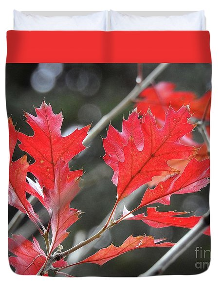 Duvet Cover featuring the photograph Autumn Leaves by Peggy Hughes