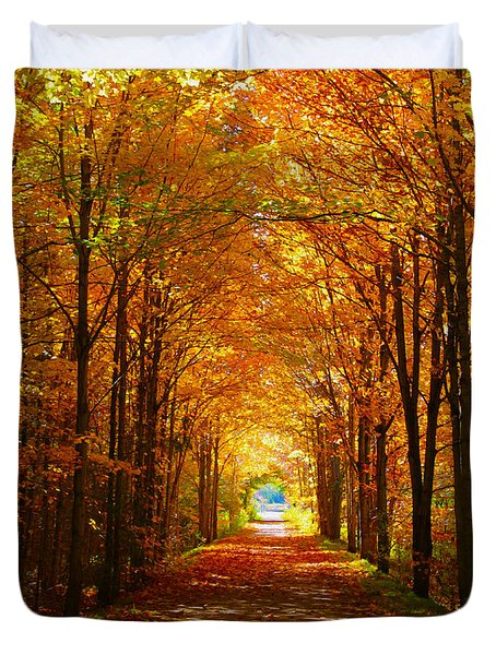 Autumn Light And Leaf Painting Duvet Cover by Nina Silver