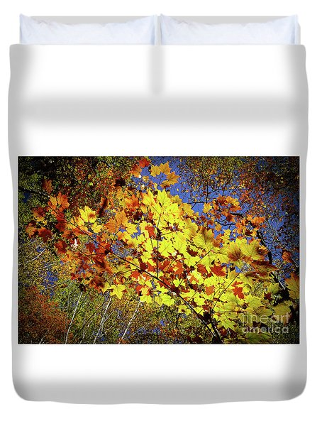Duvet Cover featuring the photograph Autumn Light by Tatsuya Atarashi