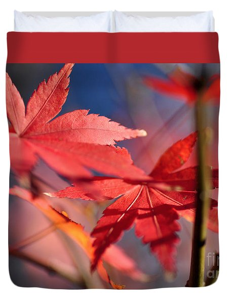 Autumn Maple Duvet Cover by Kaye Menner