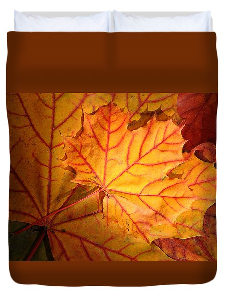 Autumn Maple Leaves Duvet Cover