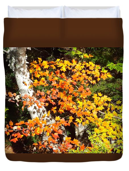 Autumn Maple Duvet Cover