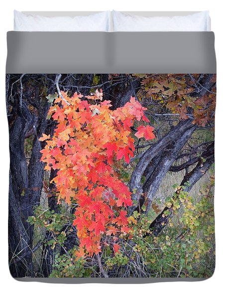 Autumn Oak Leaves Duvet Cover
