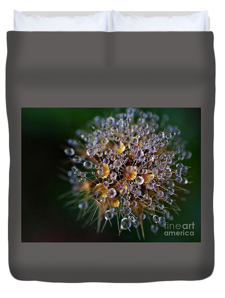 Autumn Pearls Duvet Cover by AmaS Art