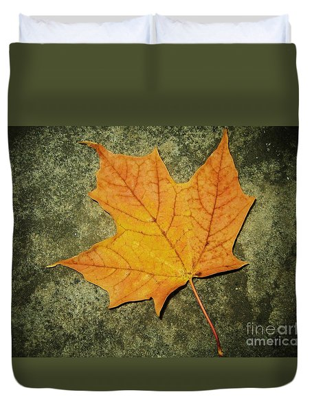 Autumn Duvet Cover by Reb Frost