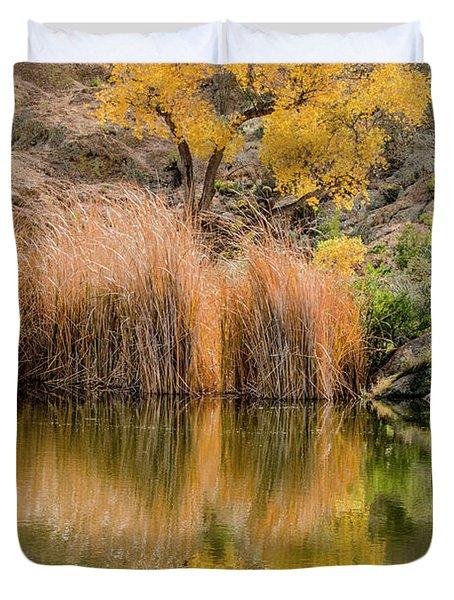 Autumn Reflection At Boyce Thompson Arboretum Duvet Cover