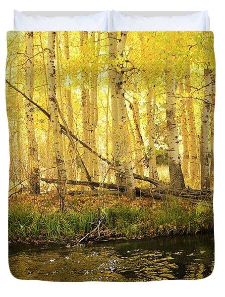 Autumn Soft Light In Stream Duvet Cover