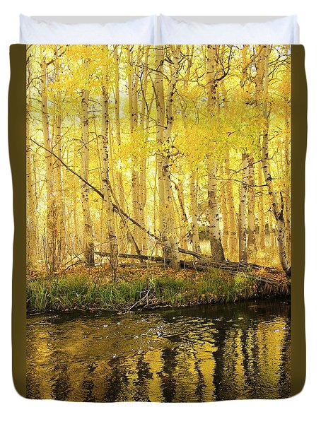 Autumn Soft Light In Stream Duvet Cover