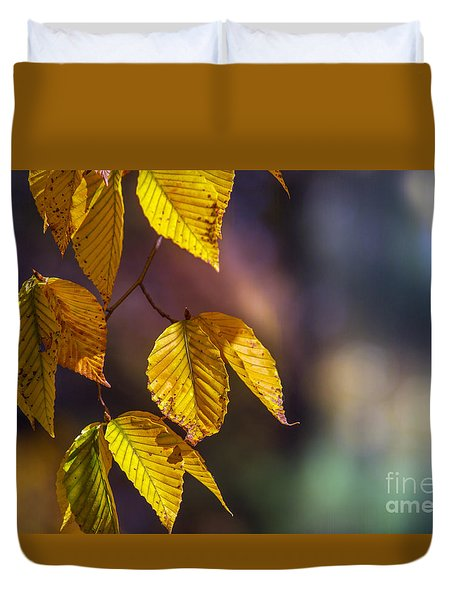 Duvet Cover featuring the photograph Autumn Sonata by Rima Biswas