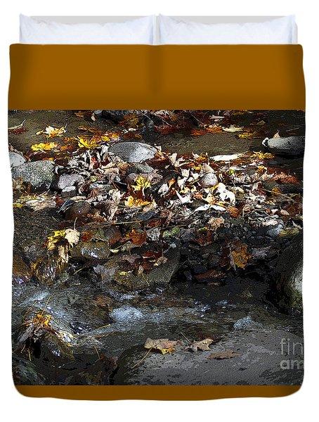 Autumn Soup Duvet Cover by Diane E Berry