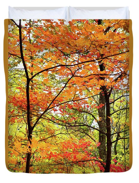 Autumn Splendor Fall Colors Leaves And Trees Ap Duvet Cover by Dan Carmichael